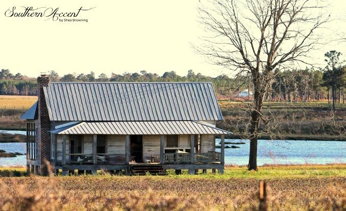 IMG_4689 ed lakeland 2